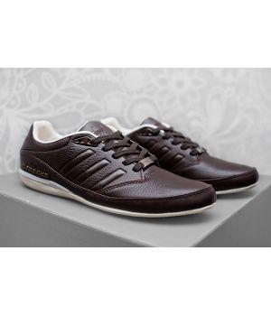 Adidas Porshe Design S3 Brown (41-45)